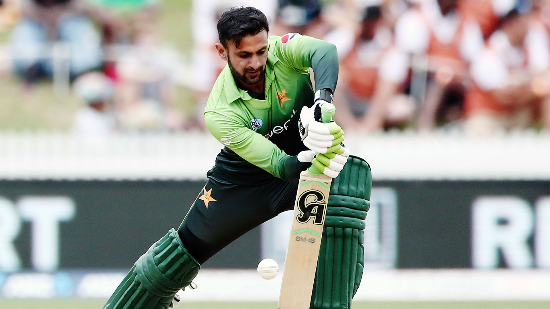 West Indies were dismissed for only 60, slumping to the second-biggest Twenty20 international defeat of all time against Pakistan.