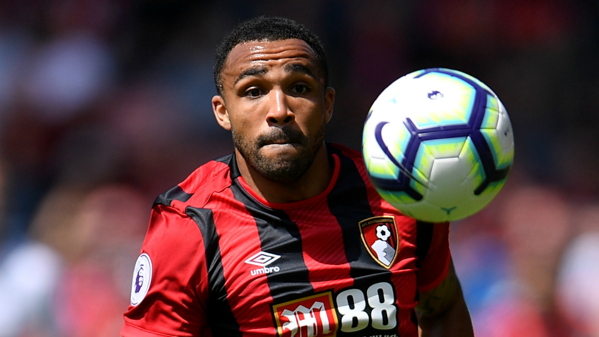 The England striker was linked with a January move to Chelsea, but Callum Wilson is staying at Bournemouth.