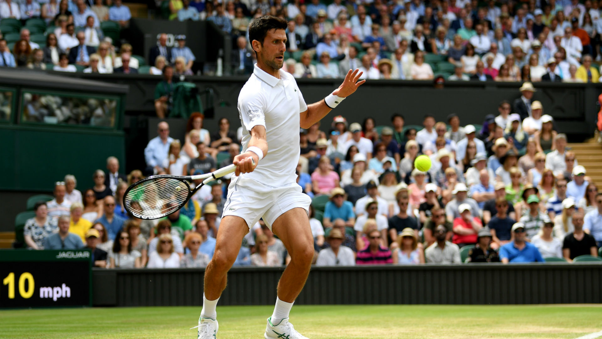 Djokovic brushes Goffin aside