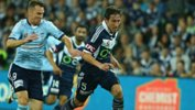Victory captain Mark Milligan is poised to join UAE club Baniyas FC.