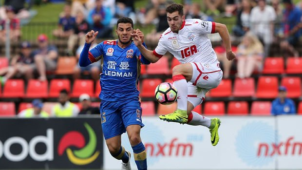 Ben Garuccio has been in excellent form for Adelaide United this season.