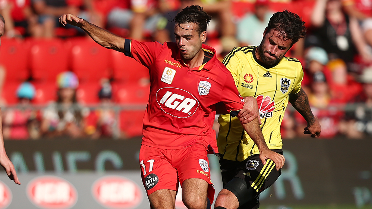 To read the full feature on Nikola Mileusnic, head to the AUFC Store merchandise vans, Red Zone, and outside IGA Family Park at Coopers Stadium on match day!