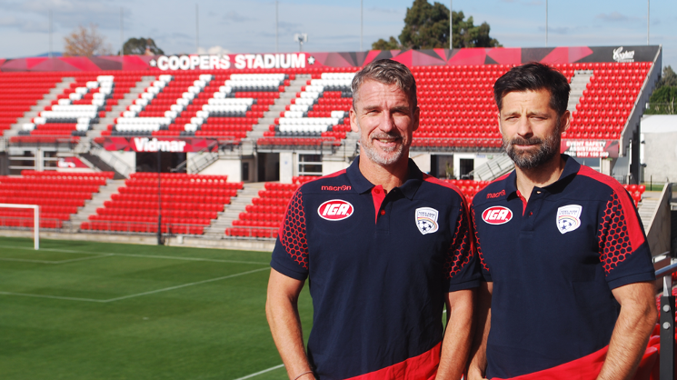 Filip Tapalovic appointed Reds Assistant Head Coach