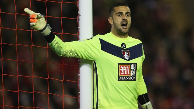 Adam Federici is set for a stint on the sidelines with a knee injury.