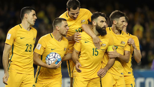 Socceroos players celebrate Mile Jedinak's equaliser against Japan in October.