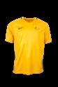 Caltex Socceroos 2016 Men's Replica Home Jersey