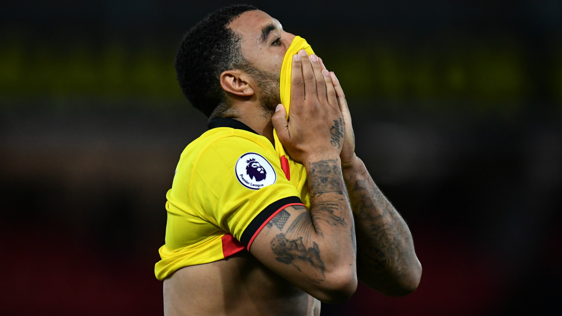 Troy Deeney Watford Premier League