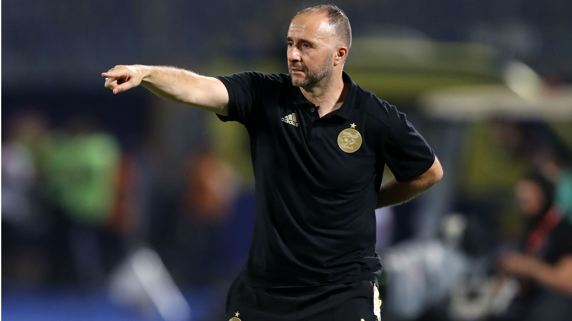 Afcon 2019: Djamel Belmadi lauds Algeria's attitude and mental strength against Nigeria