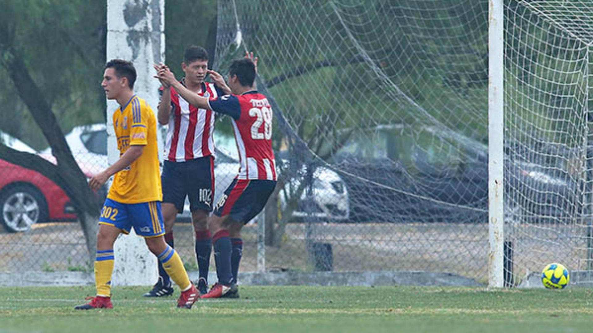 Tigres, ¿el primer campeón con Liguilla perfecta?