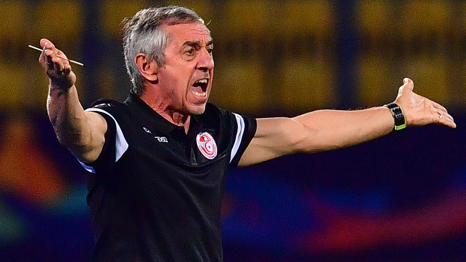 Afcon 2019: Tunisia rediscovered a certain level against Ghana - Giresse