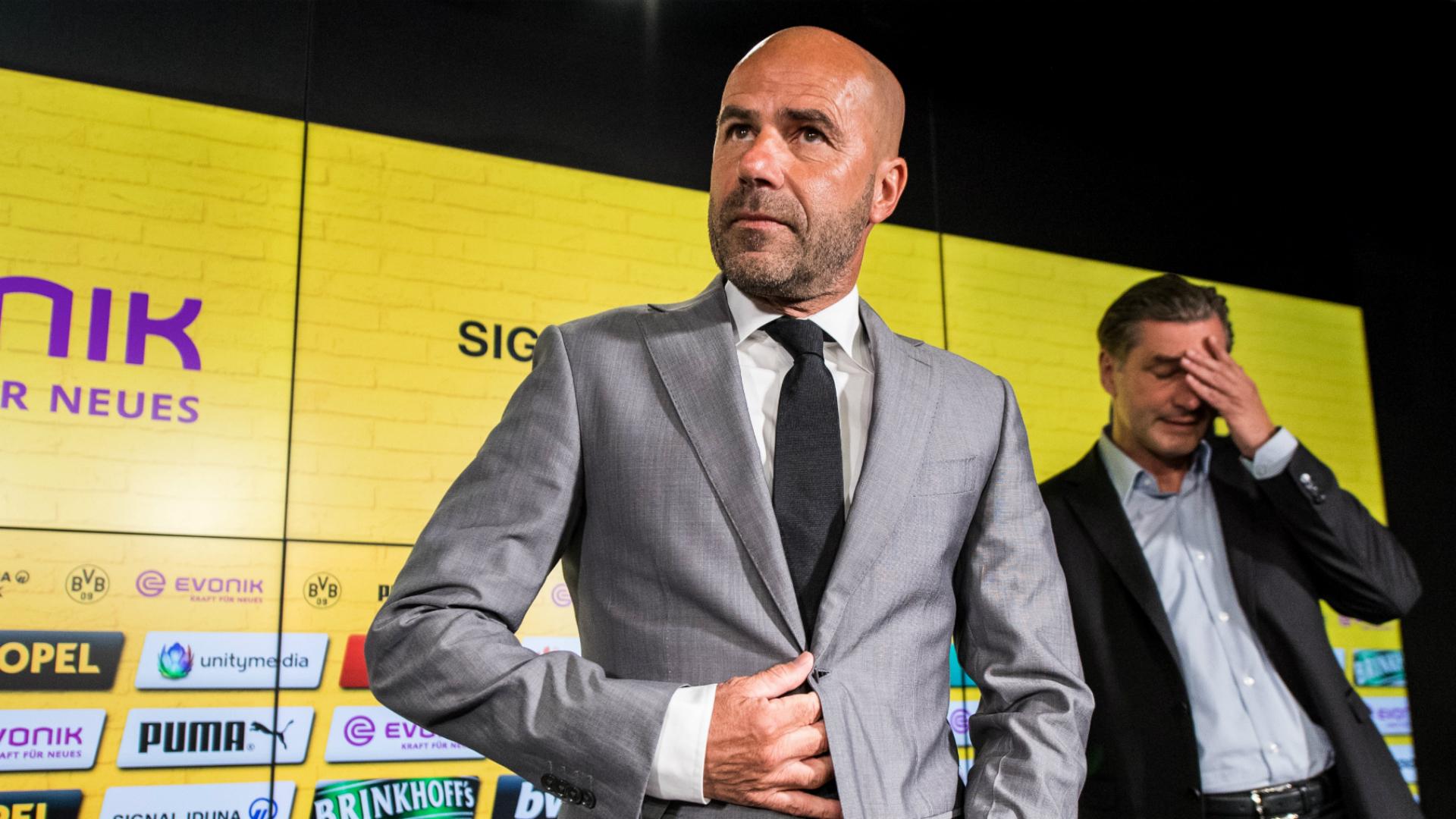 Peter Bosz Borussia Dortmund