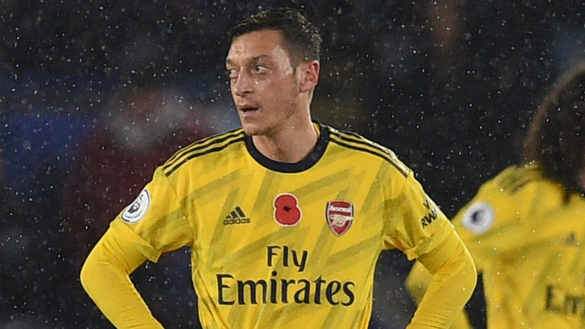 'Ozil should be the cherry on the cake... but Arsenal haven't got a cake!' – Adams slams Gunners' recruitment