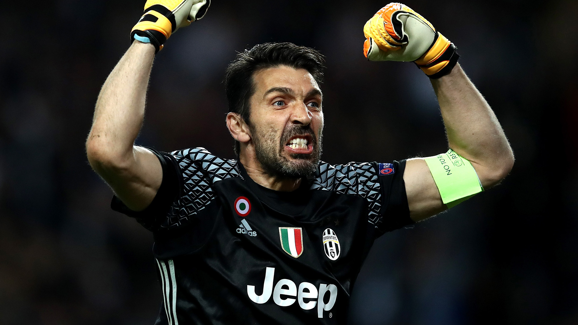 buffon - photo #42