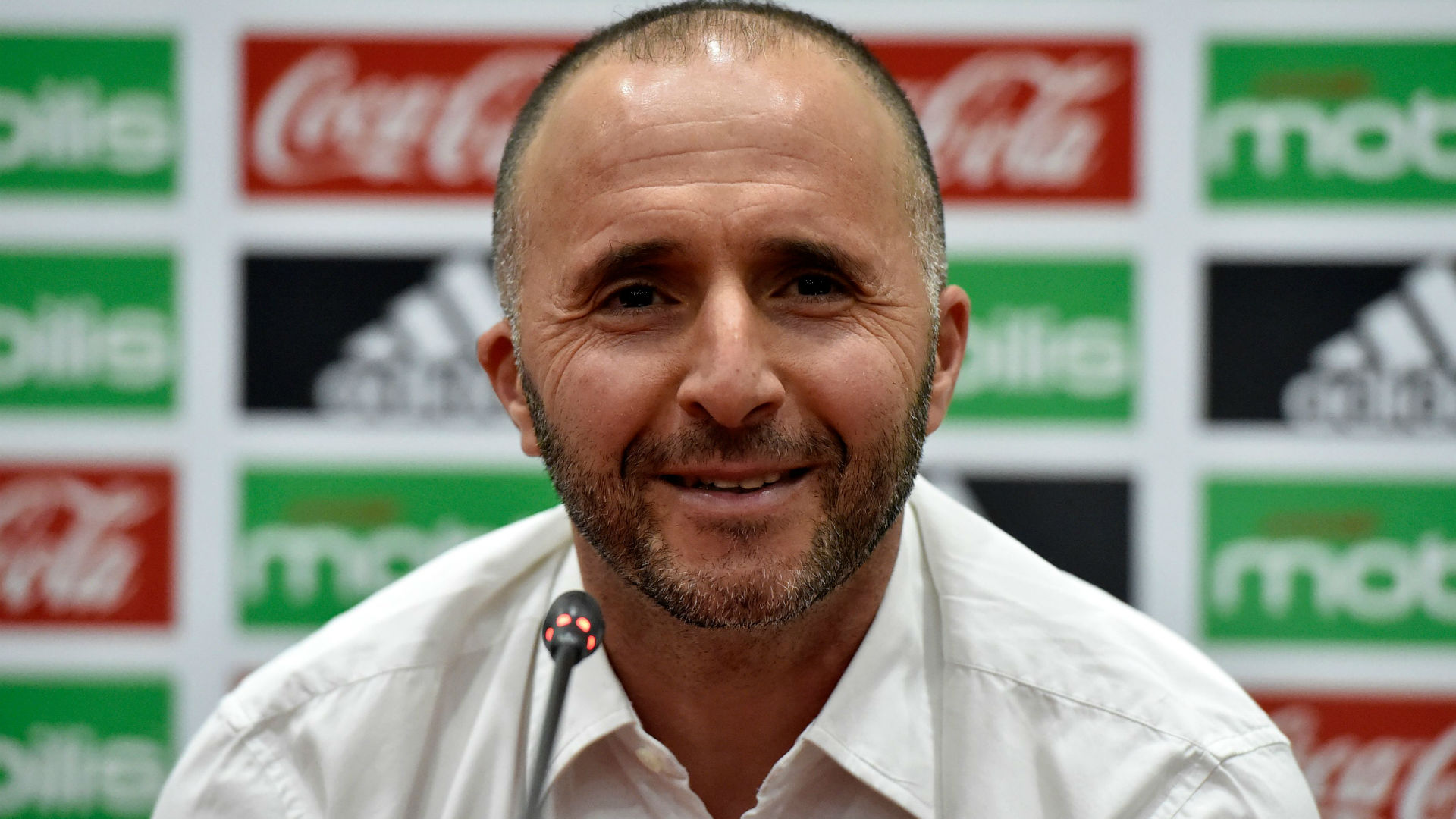 Belmadi: I can't promise Algerians Afcon title