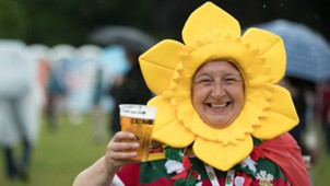 Fan England Wales European Championship 16062016
