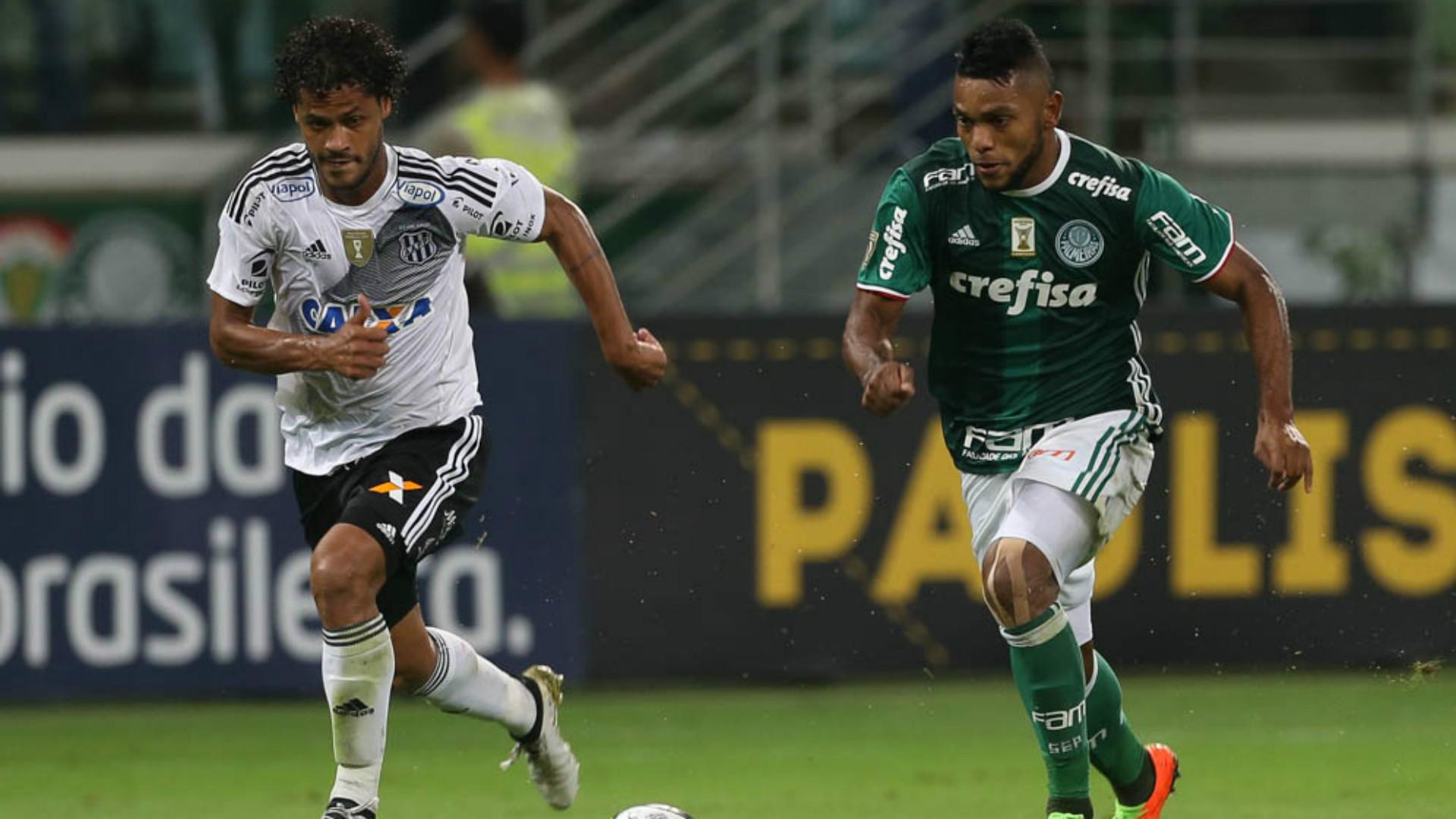 Borja - Palmeiras x Ponte Preta - 22/04/2017