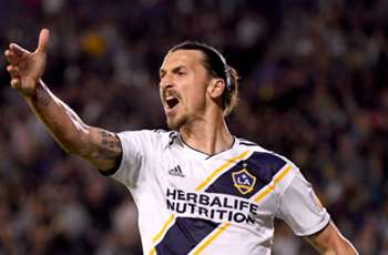 VIDEO: What the duck? Fowl pitch invasion can't save Ibrahimovic's LA Galaxy