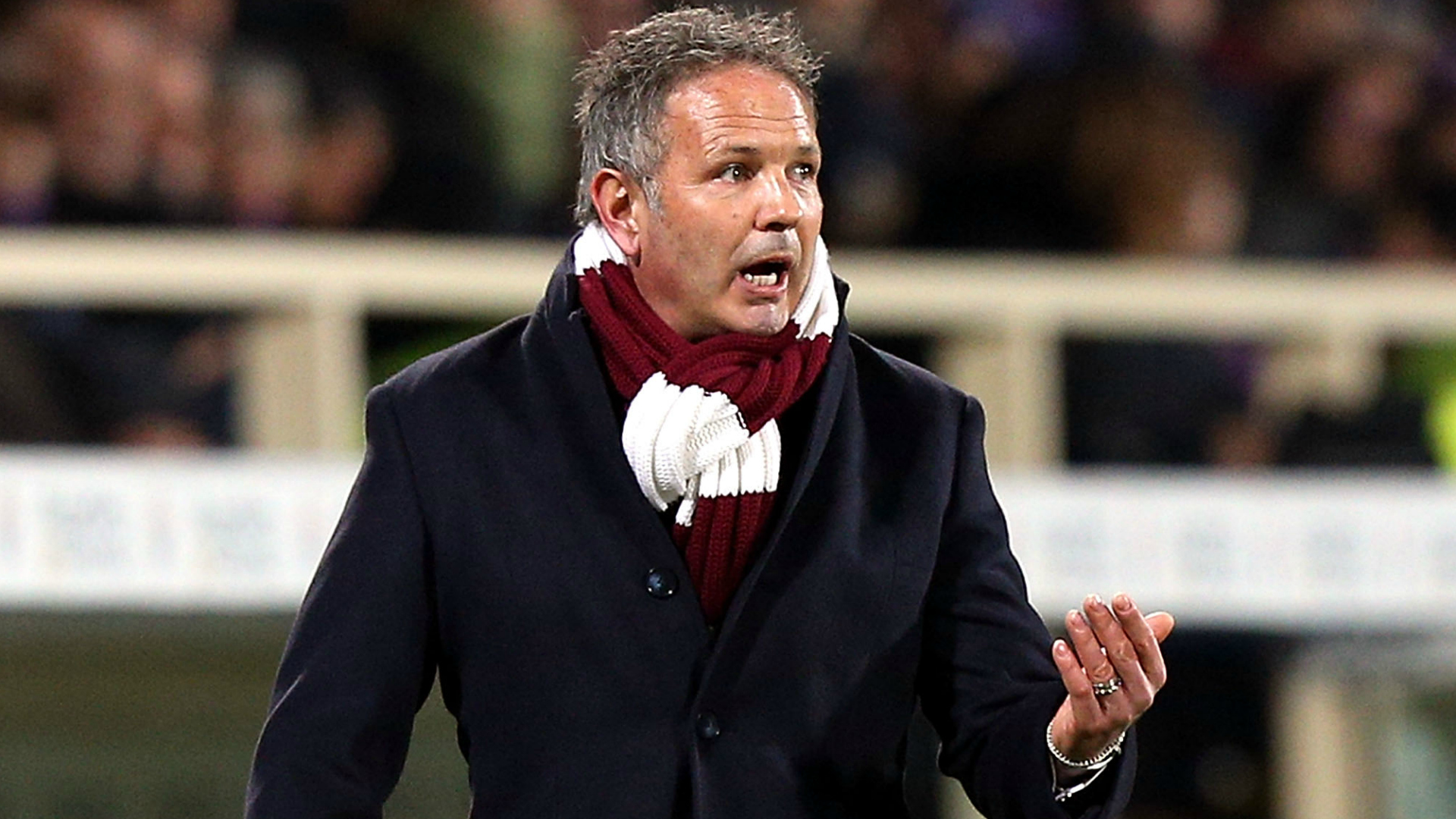 Fiorentina-Torino, Mihajlovic: