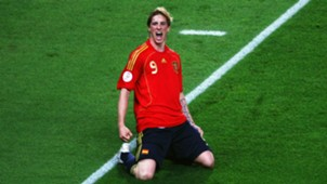 HD Fernando Torres Spain