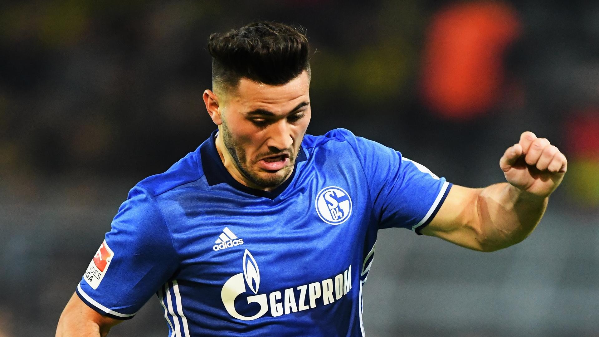 Sead Kolasinac, Schalke