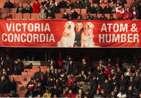 Victoria concordia, estilo canino