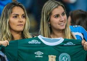 El equipo brasileño busca volver a armar el equipo, tras la tragedia de fines de noviembre que dejó un saldo de 71 muertos. Un repaso por las incorporaciones.