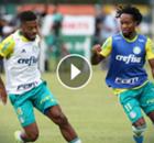 ►Dois times competitivos no Palmeiras