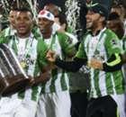 La fiesta verdolaga por la Copa Libertadores