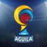 Los equipos del Fútbol Profesional Colombiano se refuerzan para conseguir sus objetivos en 2016. Así se mueve el mercado de pases en el rentado local. (ACTUALIZADO 11/01/2015 07:15)