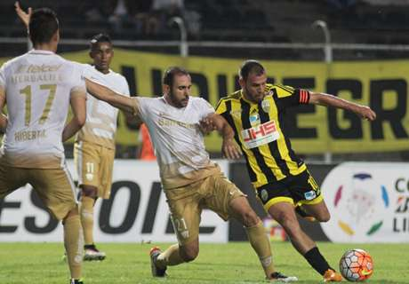 Hond is invaller bij Copa Libertadores