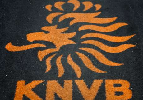KNVB to investigate World Cup bid