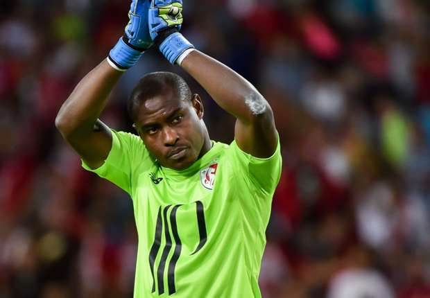 Injured Vincent Enyeama ruled out of Guingamp clash