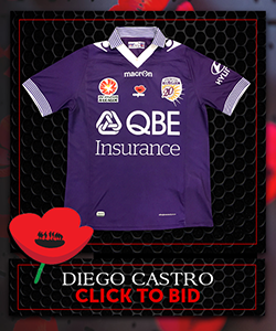 Signed Ltd Edition PGFC Poppy Auction Jersey CASTRO