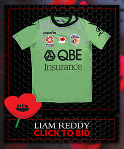 Signed Ltd Edition PGFC Poppy Auction Jerseys L REDDY