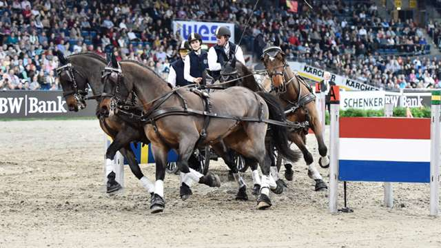 Highlights from the first leg of the FEI World Cup™Driving 2014/15 season in Stuttgart are now available online.