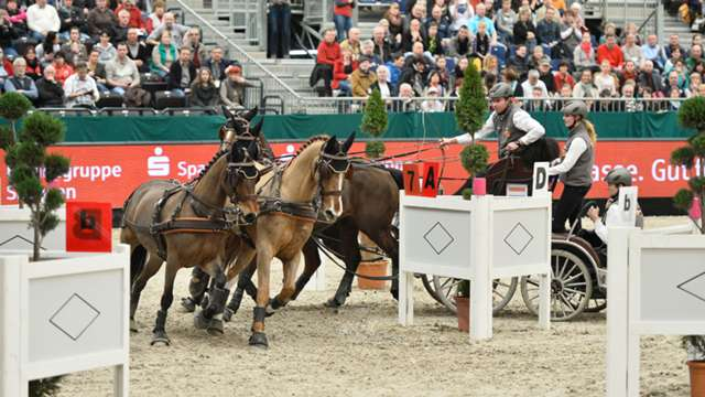 Highlights from the final leg of the FEI World Cup™Driving 2014/15 season in Leipzig are now available online.