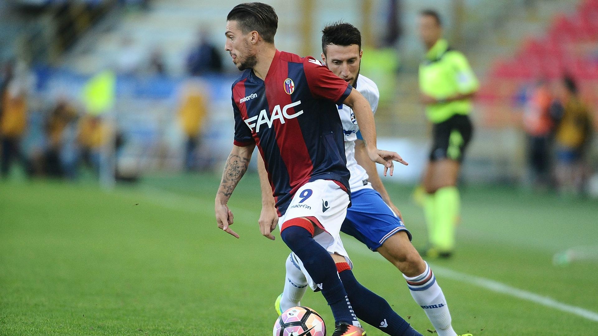 Serie A Bologna, Verdi ok: c'è per il Sassuolo