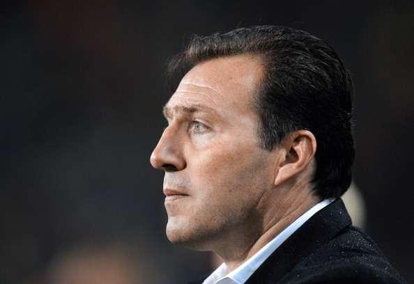 Marc Wilmots schaffte erstmals seit 2002 wieder die WM-Qualifikation mit Belgien