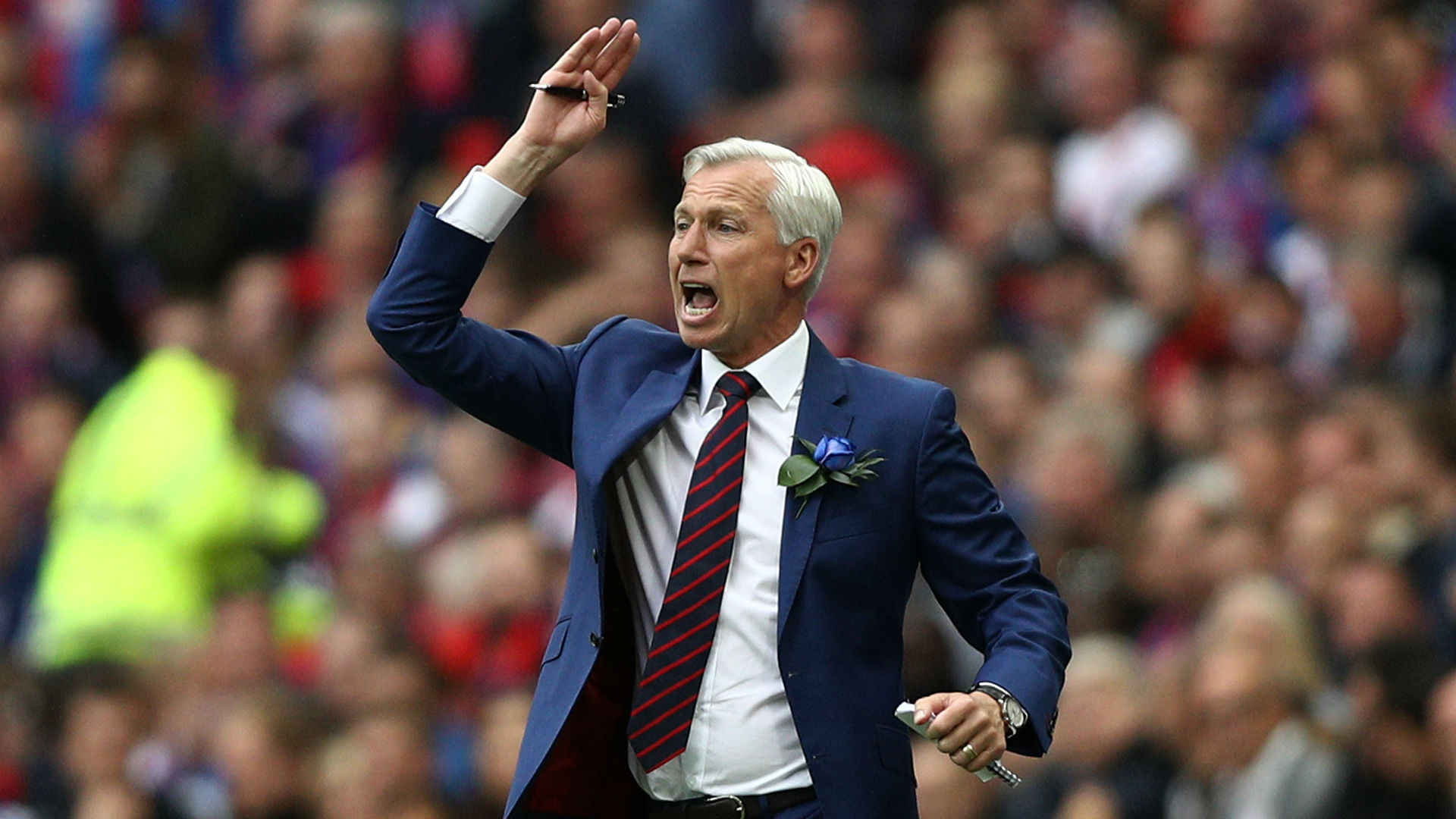 Alan Pardew FA Cup final Manchester United v Crystal Palace