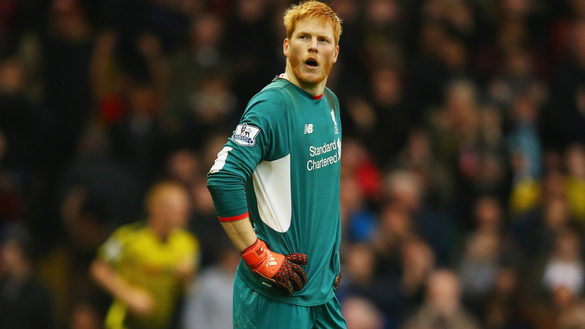 Adam Bogdan could return to Liverpool after torn ACL setback with Wigan