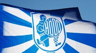 Hødd-flagg