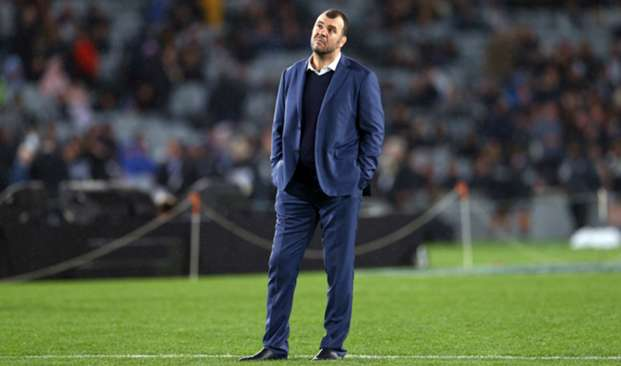 Michael Cheika - cropped