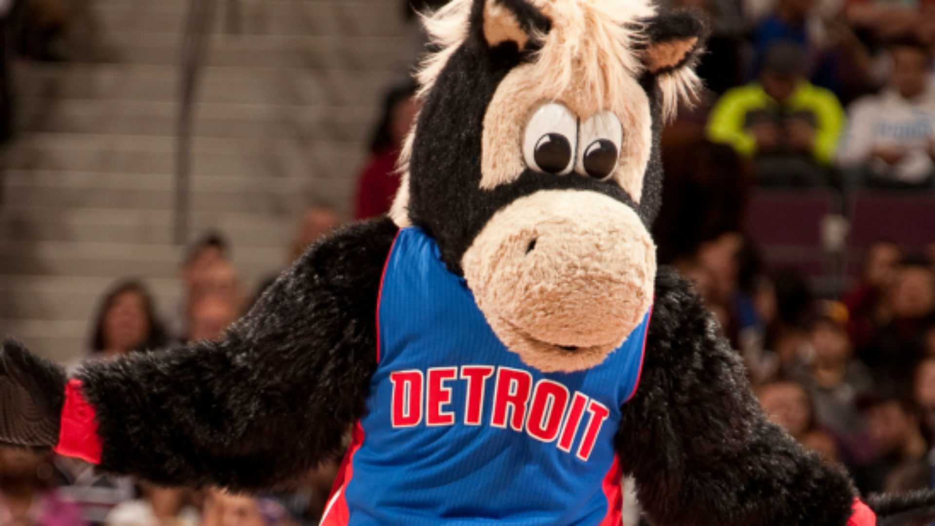 Pistons mascot Hooper