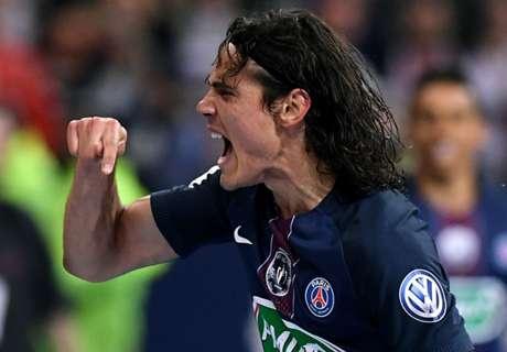 Cavani 'can replace Ibrahimovic'
