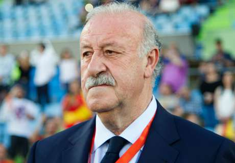 Del Bosque calm after Spain loss