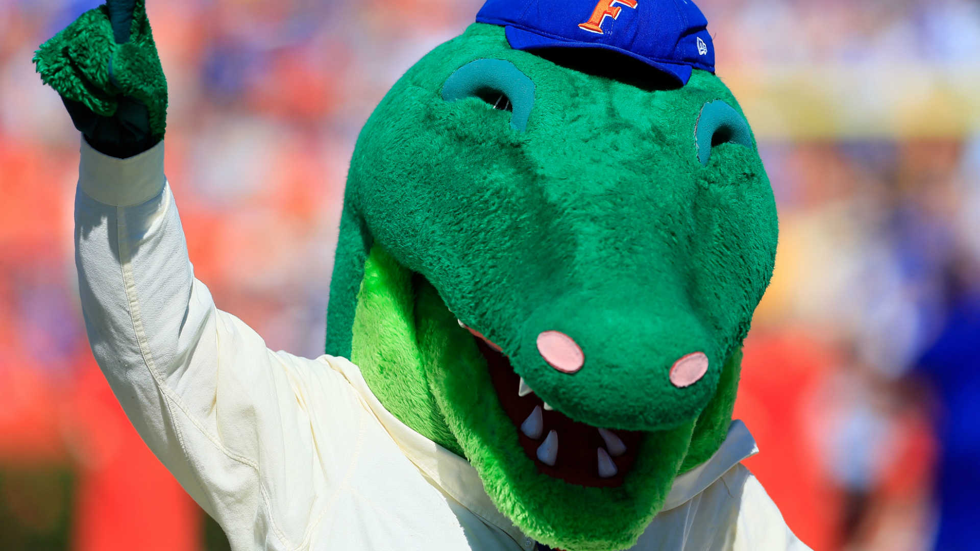 Albert the Gators' mascot shields a kid from a foul ball