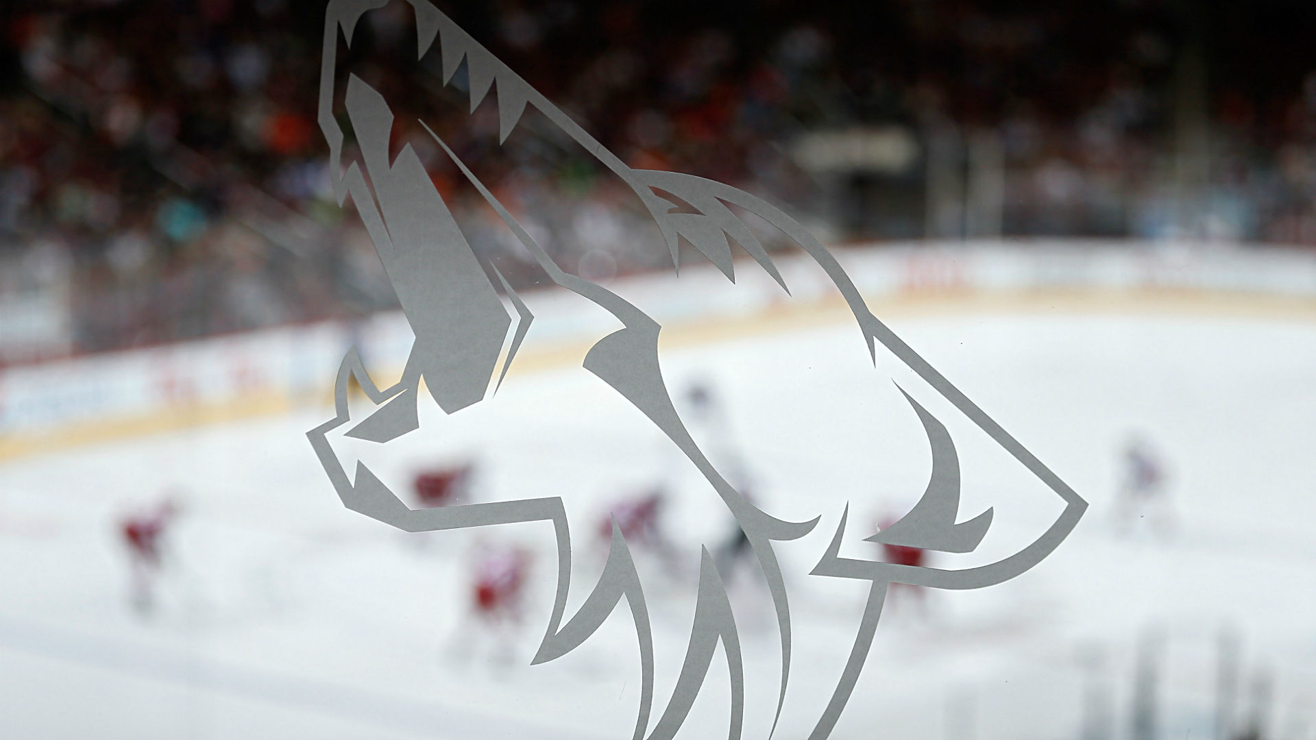 Coyotes name analytics expert assistant general manager