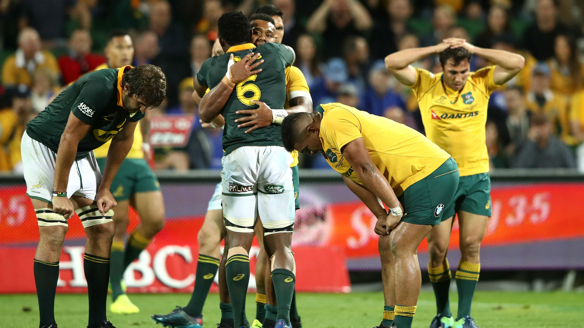 Springboks-Wallabies draw ensures All Blacks retain Rugby Championship