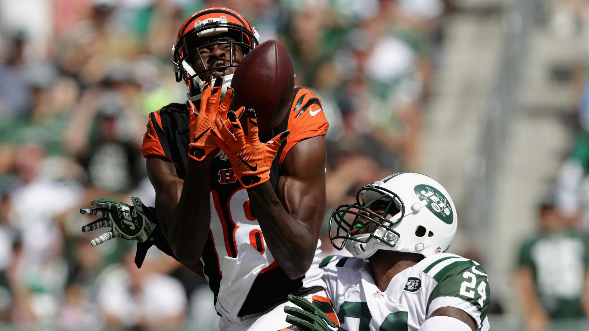 A J Green torches Darrelle Revis to help Bengals topple Jets
