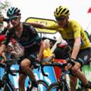 woutpoels - cropped